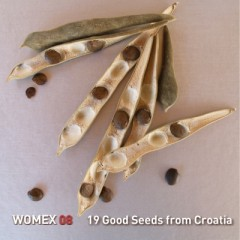 19_good_seeds_web