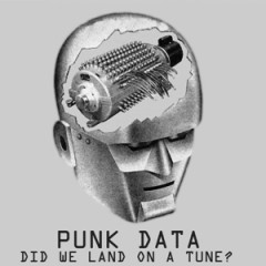 PUNK DATA COVER 300