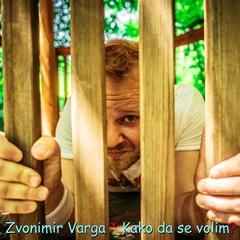 Zvonimir Varga - Kako da se volim 240