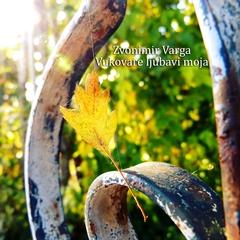 Zvonimir Varga - Vukovare ljubavi moja 240