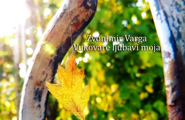 Zvonimir Varga - Vukovare ljubavi moja
