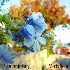 Zvonimir Varga - Miris ljeta 240